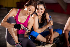 Social networking at a gym. Cute female friends texting and social networking at a cross-training gym Stock Photos