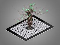 Sociale die media pictogrammen in boomvorm worden geplaatst op Labyrint in de tablet Stock Foto