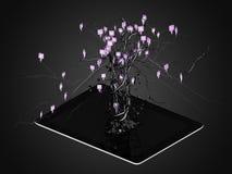 Sociale die media pictogrammen in boomvorm worden geplaatst op Moderne zwarte tabletpc Royalty-vrije Stock Foto's