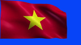 Socialist Republic of Vietnam, Flag of Vietnam / Viet Nam - LOOP Royalty Free Stock Photography