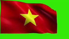 Socialist Republic of Vietnam, Flag of Vietnam / Viet Nam - LOOP Royalty Free Stock Photos