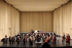 Societ filarmónico del straus del concierto del Año Nuevo Imagen de archivo