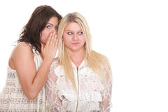 Society gossip two happy young girlfriends talking Royalty Free Stock Images
