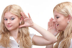 Society gossip - two happy young girlfriends talking white backg Stock Photography