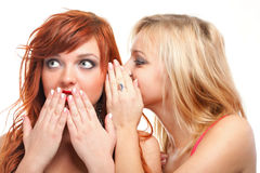 Society gossip - two happy young girlfriends talking white backg Royalty Free Stock Photo
