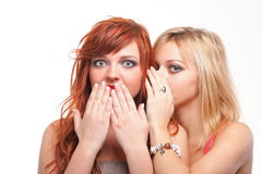 Society gossip - two happy young girlfriends talking white backg Royalty Free Stock Photos