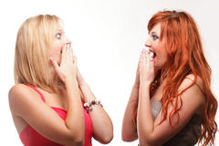 Society gossip - two happy young girlfriends talking white background. Two happy young girlfriends blond and ginger talking white background - society gossip royalty free stock images