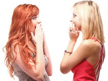 Society gossip- two young girlfriends talking. Two happy young girlfriends blond and ginger talking white background - society gossip, rumor, rumour stock photo