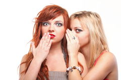 Society gossip- two young girlfriends talking Royalty Free Stock Images