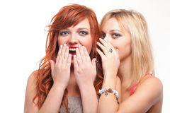 Society gossip - two young girlfriends talking. Two happy young girlfriends blond and ginger talking white background - society gossip, rumor, rumour royalty free stock images