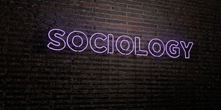 SOCIOLOGY -Realistic Neon Sign on Brick Wall background - 3D rendered royalty free stock image. Can be used for online banner ads and direct mailers Royalty Free Stock Photography