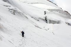 Socios alpinos que caminan en rastro de la nieve foto de archivo libre de regalías