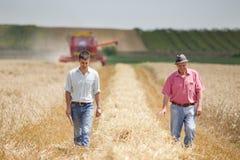Socios de la agricultura en cosecha del trigo Imagenes de archivo