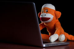 Sock monkey using a computer. A sock monkey using a laptop computer Royalty Free Stock Photography