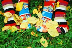 Socken im Herbst. stockfoto