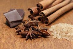 socker för brun choklad för anise kanelbrunt Fotografering för Bildbyråer