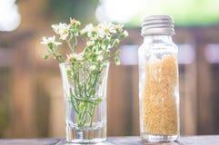 Socker och blomma Arkivfoto