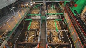 Socker som bearbetar fabriksmaskinen behandla för matväxt stäng maskinen som skjutas upp tvätt stock video