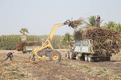 Sockerrörlastbil arkivfoton