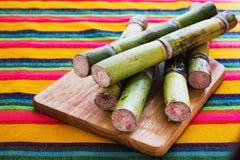 Sockerrotting från Mexiko, mexikansk sockerfrukt royaltyfri fotografi