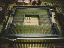 Socket 775 CPU Royalty Free Stock Photos
