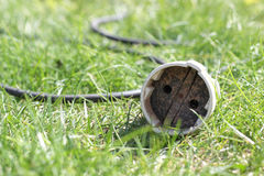 The socket the extender in a grass Stock Photo