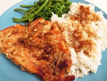 Sockeye Salmon Fillet Dinner de Teriyaki Imagem de Stock