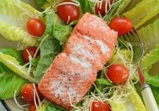 Sockeye salmon salad Royalty Free Stock Photo