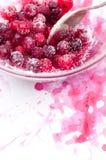 Sockrade Cranberries arkivbild