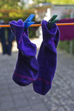 Socks on the clothesline Royalty Free Stock Image