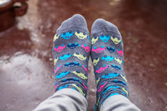 Socks with colorful small cars Royalty Free Stock Photos