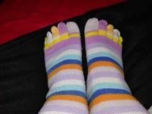 Socks. Made of cotton stock photos