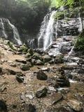 Soco tombe en Caroline du Nord image stock