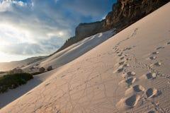 socotra Иемен песка острова дюн лучника стоковое фото rf