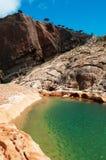 Socotra, descripción de la meseta de Homhil del lecho de un río seco y los árboles de Dragon Blood Foto de archivo libre de regalías