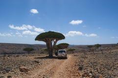 Socotra, ilha, Oceano Índico, Iémen, Médio Oriente Fotos de Stock