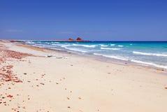 Socotra island Stock Photos