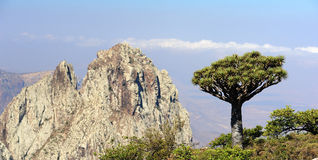 Socotra island. Higghe mountains Stock Photos