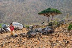 Socotra, kleines lokales Mädchen Lizenzfreies Stockfoto