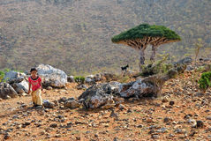 Socotra, little local girl Royalty Free Stock Photo