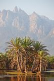Socotra mountains Stock Images