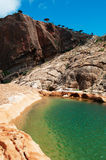 Socotra, vista geral do platô de Homhil do barranco e as árvores de Dragon Blood foto de stock royalty free
