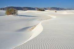 Socotra, Yemen, witte duinen in Stero Royalty-vrije Stock Afbeeldingen