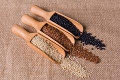 Soczewic, lna i quinoa ziarna w drewnianej łyżce, Fotografia Stock