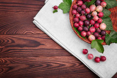 Soczyści, barwiący agresty z liśćmi w brown koszu na drewnianym stole, Agrestów różni cienie czerwony kolor Zdjęcia Stock