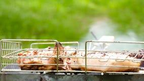 Soczyści duzi stki gotują na węglach W górę grilla Plenerowy odtwarzania, turystyki, wiosny lub lata weekend, zbiory