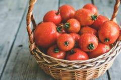 Soczyści dojrzali organicznie pomidory w koszu na drewnianym tle Fotografia Royalty Free