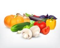 Soczyści i dojrzali warzywa Obraz Stock