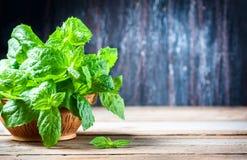 Soczysta, świeża, aromatyczna zieleni mennica na drewnianym stole, Obraz Stock