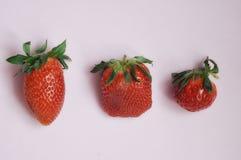 Soczysta dojrzała truskawka na lekkim tle zdjęcie royalty free